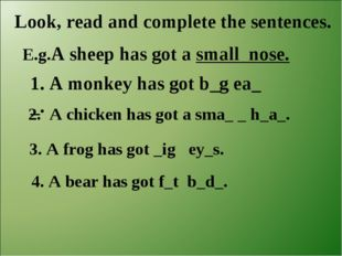 Look, read and complete the sentences. E.g.A sheep has got a small nose. 1. A