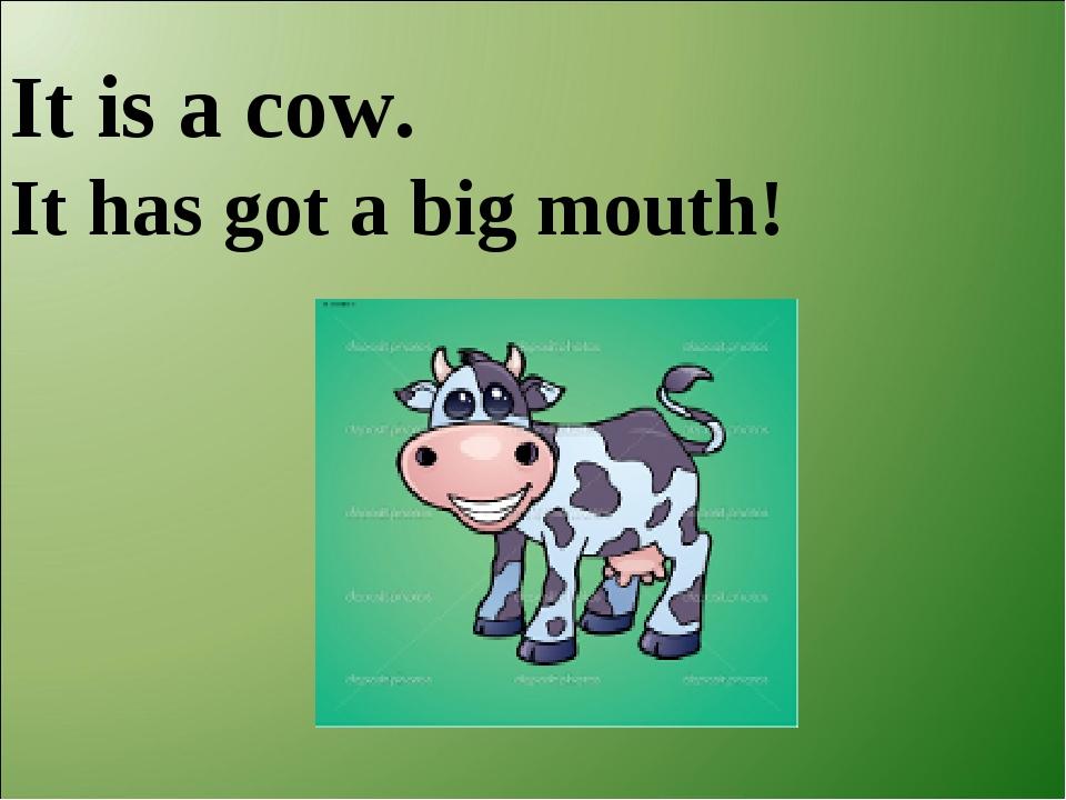 It is a cow. It has got a big mouth!
