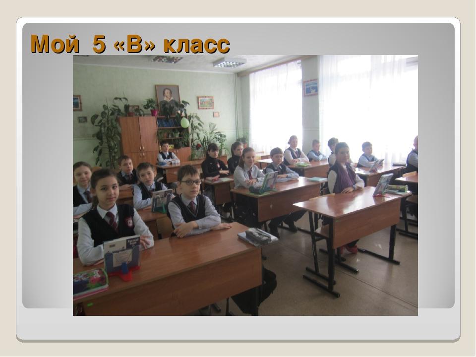 Мой 5 «В» класс