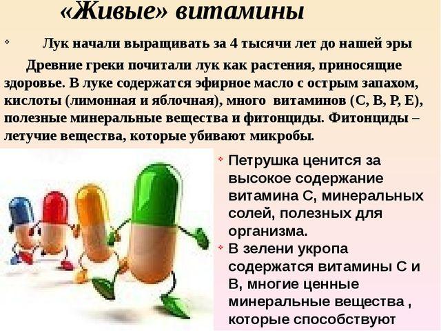 «Живые» витамины Лук начали выращивать за 4 тысячи лет до нашей эры Древние...