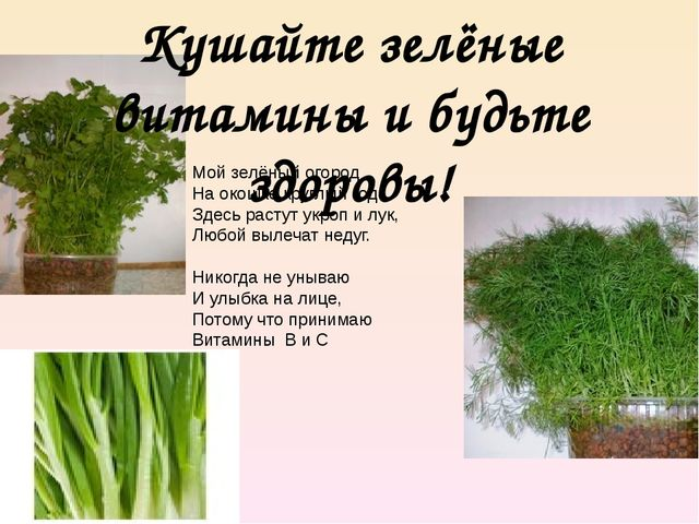 Кушайте зелёные витамины и будьте здоровы! Мой зелёный огород На окошке круг...
