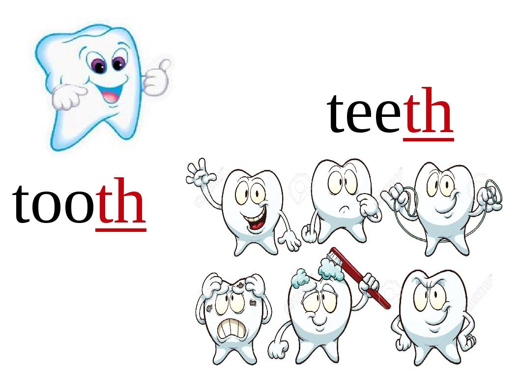 tooth teeth