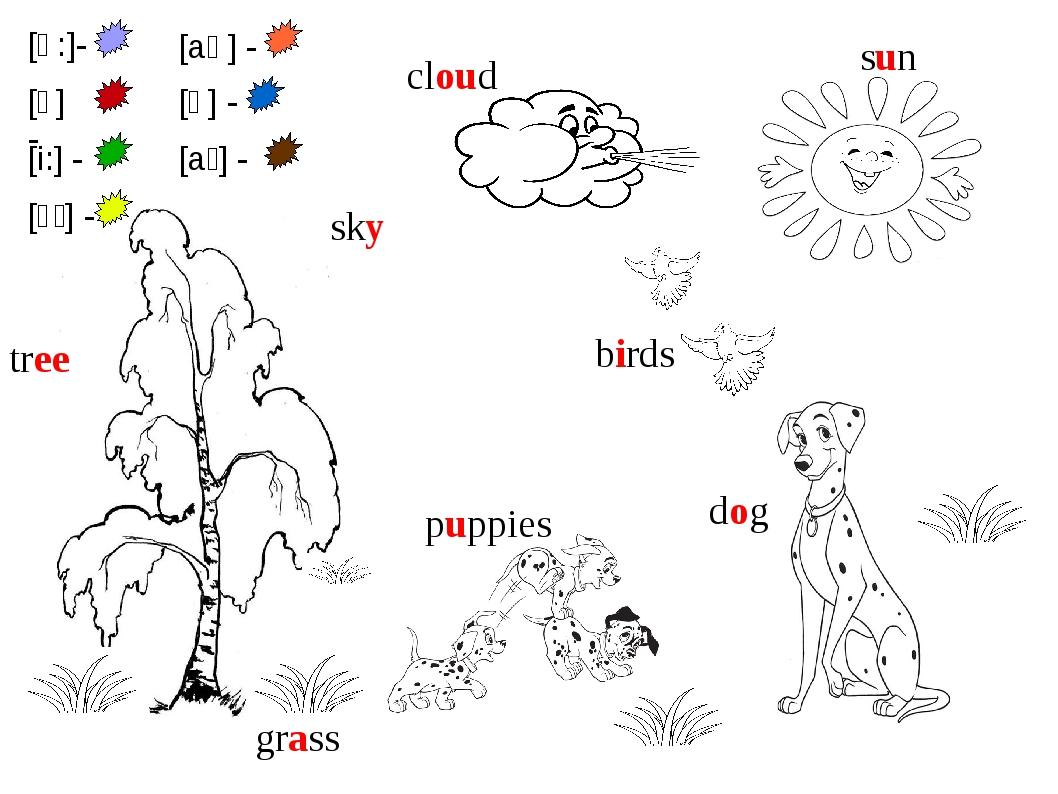 sun grass tree dog puppies sky cloud birds [ɑ:]- [ʌ] - [i:] - [aɪ] - [aʊ] - [...