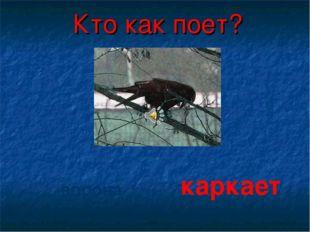 Кто как поет? ворона каркает