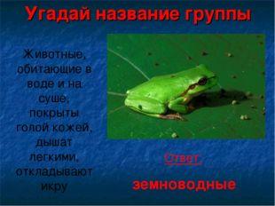 Угадай название группы Животные, обитающие в воде и на суше, покрыты голой к