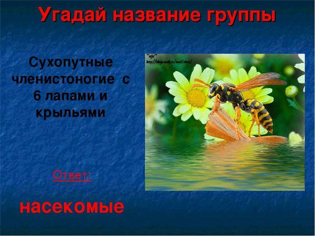 Угадай название группы Сухопутные членистоногие с 6 лапами и крыльями Ответ:...