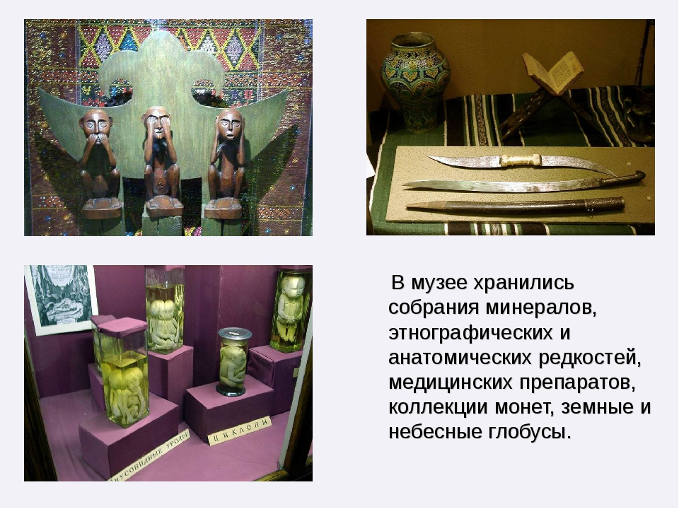 В музее хранились собрания минералов, этнографических и анатомических редкос...