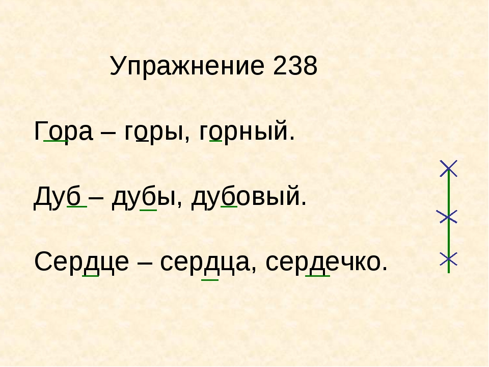 Упражнение 238 Гора – горы, горный. Дуб – дубы, дубовый. Сердце – сердца, се...