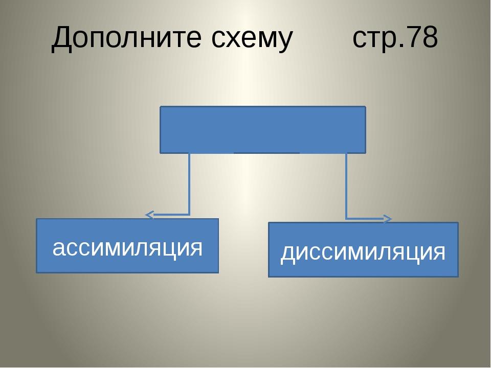 Дополните схему стр.78 ассимиляция диссимиляция