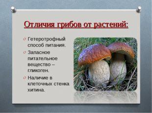 Отличия грибов от растений: Гетеротрофный способ питания. Запасное питательно