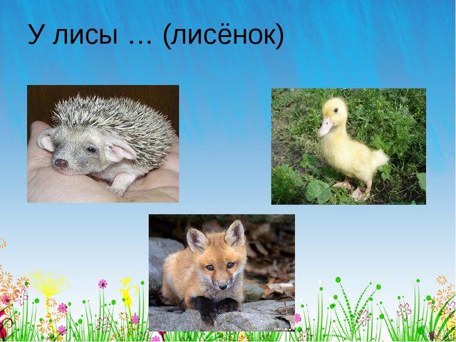 У лисы … (лисёнок)