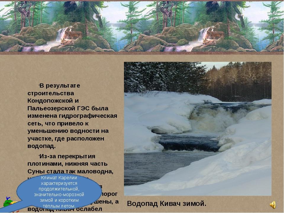 В результате строительства Кондопожской и Пальеозерской ГЭС была изменена ги...