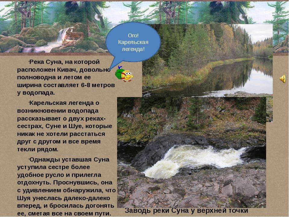Река Суна, на которой расположен Кивач, довольно полноводна и летом ее ширин...