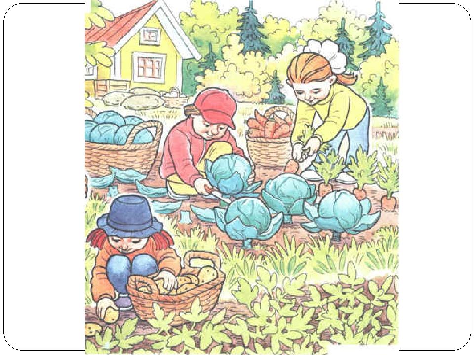 Картинки для детей труд в природе осенью