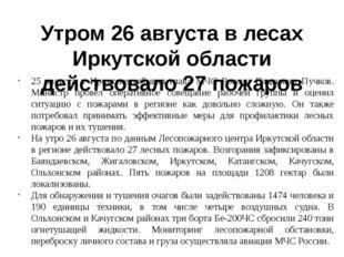 Утром 26 августа в лесах Иркутской области действовало 27 пожаров 25 августа