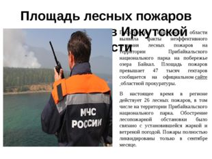 Площадь лесных пожаров сократилась в Иркутской области Прокуратура Иркутской