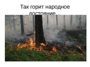 Так горит народное достояние…