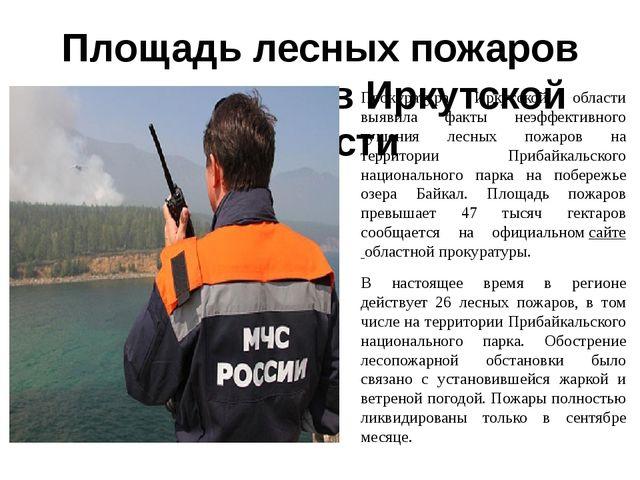 Площадь лесных пожаров сократилась в Иркутской области Прокуратура Иркутской...