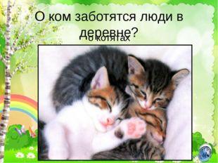 О ком заботятся люди в деревне? о котятах