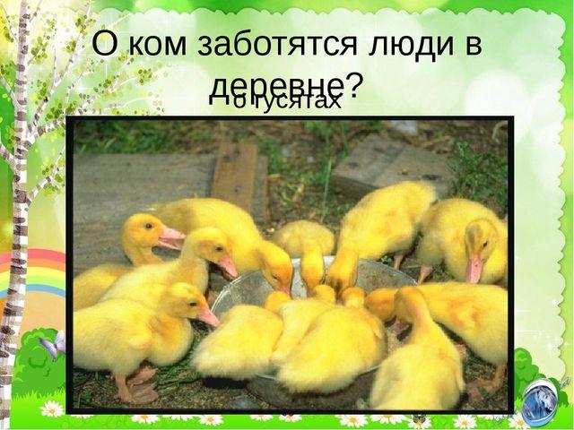 О ком заботятся люди в деревне? о гусятах