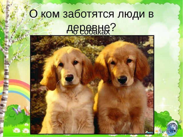 О ком заботятся люди в деревне? о собаках