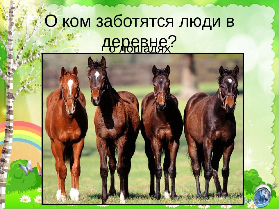 О ком заботятся люди в деревне? о лошадях