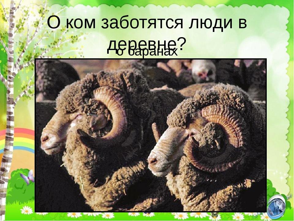 О ком заботятся люди в деревне? о баранах