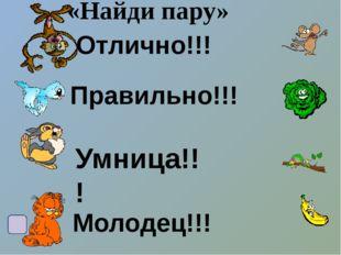 Список литературы и интернет ресурсов 1/http://ug-mama.ru/lines/im_line/8bc57