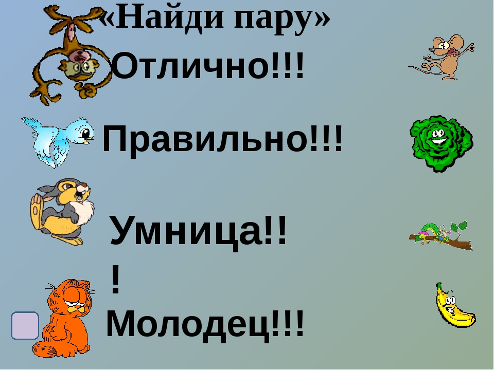 Список литературы и интернет ресурсов 1/http://ug-mama.ru/lines/im_line/8bc57...