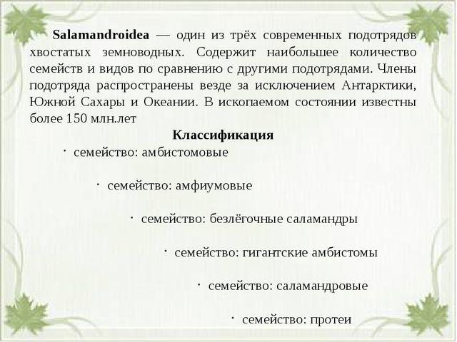 Salamandroidea — один из трёх современных подотрядов хвостатых земноводных....