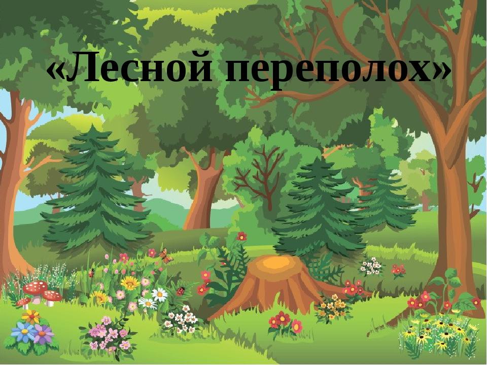 Сосчитай сколько красных цветов на полянке и помоги зайчику выбрать цифру, о...