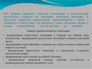 Н.Е. Щуркова предлагает педагогам использовать в воспитательной деятельности