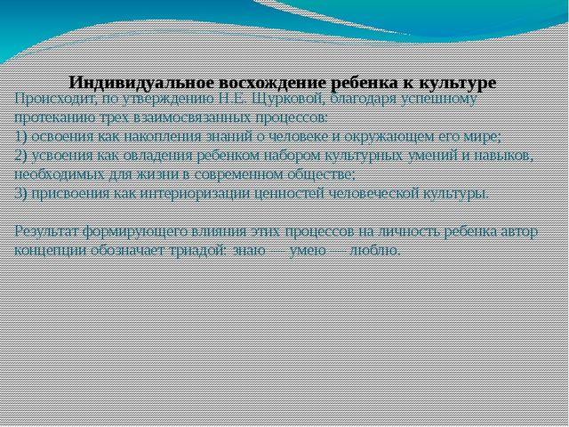 Происходит, по утверждению Н.Е. Щурковой, благодаря успешному протеканию трех...