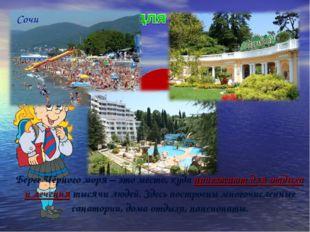 Берег Чёрного моря – это место, куда приезжают для отдыха и лечения тысячи л