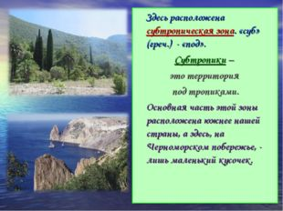 Здесь расположена субтропическая зона. «суб» (греч.) - «под». Субтропики – э