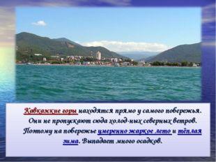 Кавказские горы находятся прямо у самого побережья. Они не пропускают сюда х