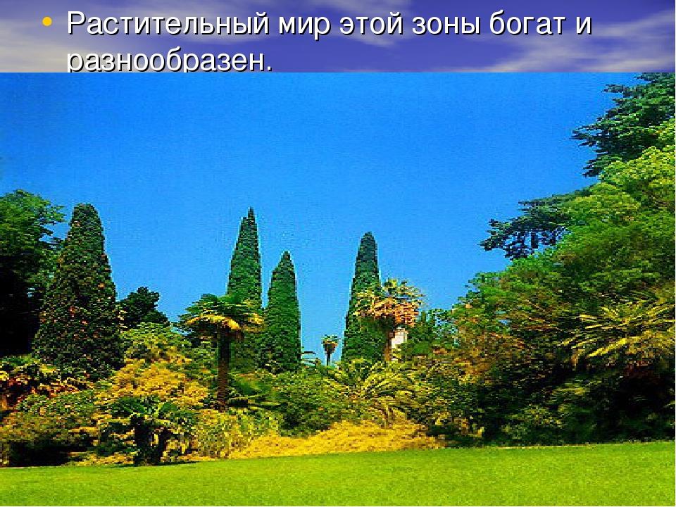 Растительный мир этой зоны богат и разнообразен.