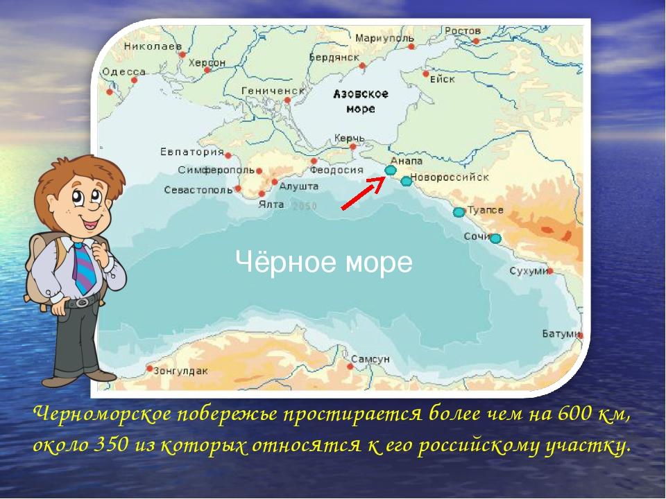 Черноморское побережье простирается более чем на 600 км, около 350 из которых...