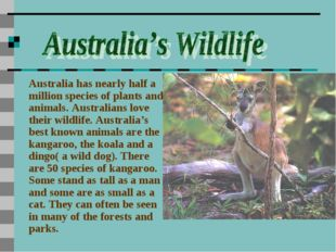 Australia has nearly half a million species of plants and animals. Australian