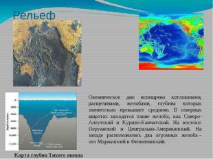 Рельеф океана Карта глубин Тихого океана Океаническое дно испещрено котлована