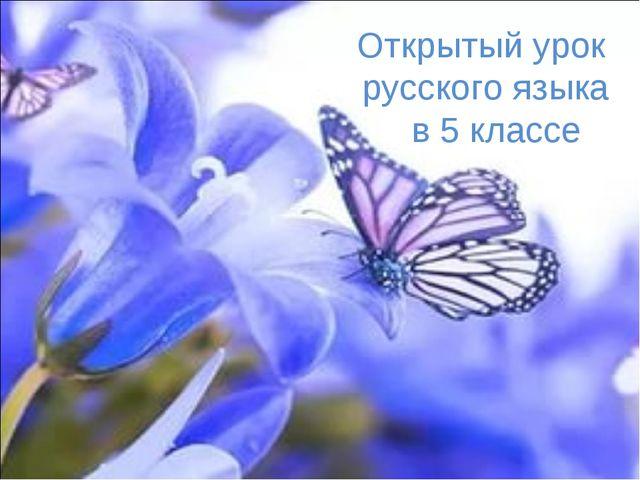 Открытый урок русского языка в 5 классе