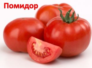 Он нам дарит сок томатный, Вкусный, нежный, ароматный. Любит солнышко синьор