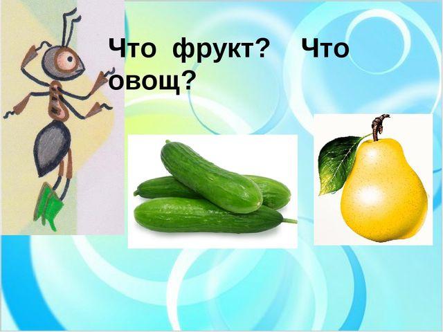 Что фрукт? Что овощ?