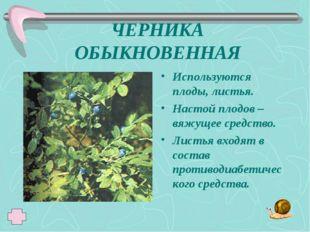 ЧЕРНИКА ОБЫКНОВЕННАЯ Используются плоды, листья. Настой плодов – вяжущее сред