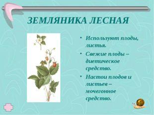 ЗЕМЛЯНИКА ЛЕСНАЯ Используют плоды, листья. Свежие плоды – диетическое средств