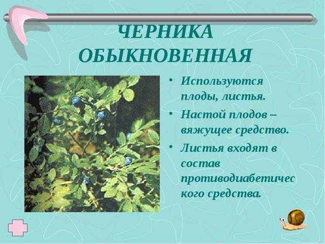 ЧЕРНИКА ОБЫКНОВЕННАЯ Используются плоды, листья. Настой плодов – вяжущее сред...