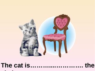 The cat is………....…………. the chair next to