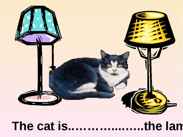between The cat is..………....…..the lamps.
