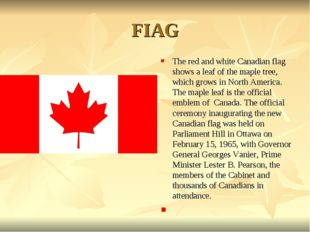 FIAG The red and white Canadian flag shows a leaf of the maple tree, which gr