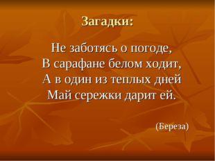 Загадки: Не заботясь о погоде, В сарафане белом ходит, А в один из теплых дн